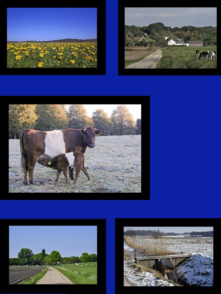 Brabantse wal 3kopie