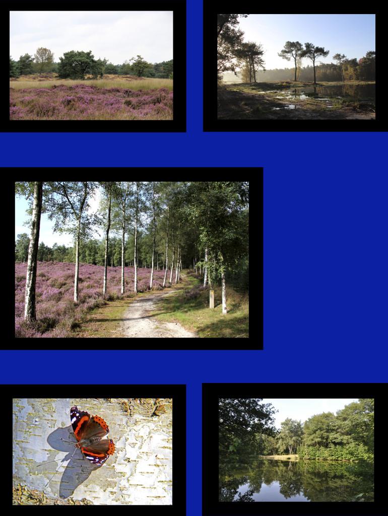 Grenspark 2kopie