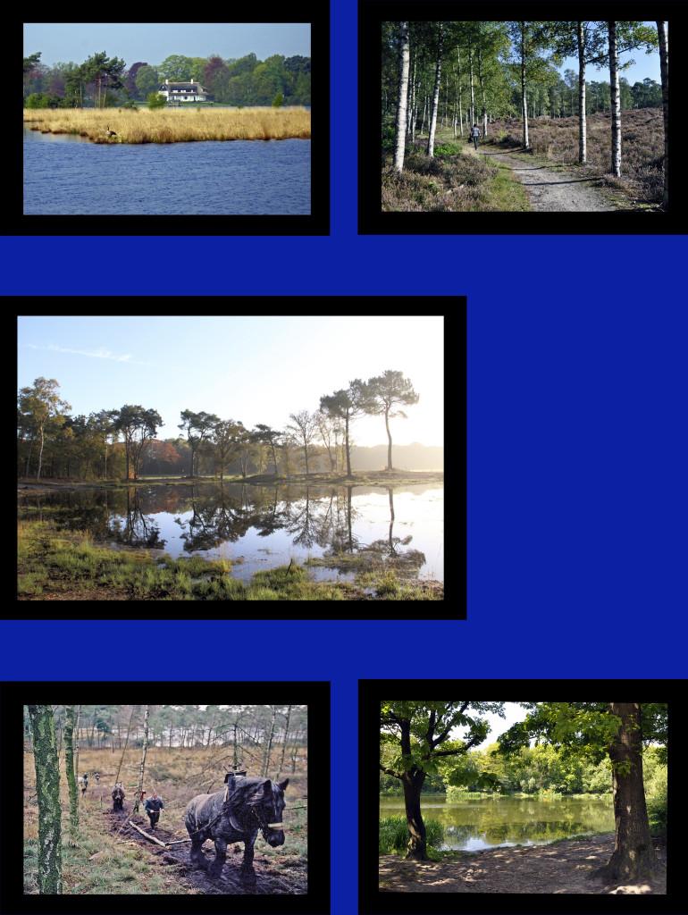 Grenspark 3kopie